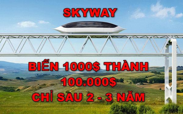 Skyway là gì?  Có nên đầu tư vào cổ phần SkyWay hay không? Biến 1000$ thành 100.000$ sau 2 - 3 năm