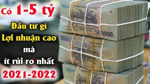 Kinh Doanh Đầu tư gì cho Lợi nhuận cao mà ít rủi ro Nhất 2021-2022.