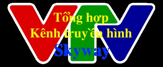 Tổng hợp kênh truyền thông phương tiện về SkyWay